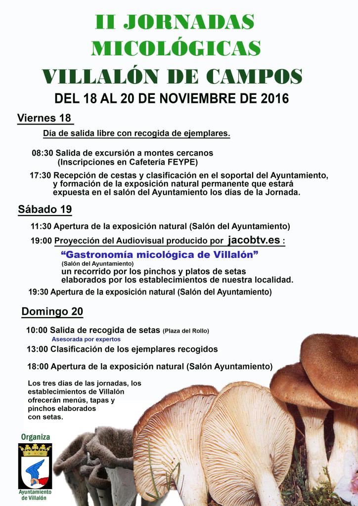 cartel-jornadas-2016-villalon