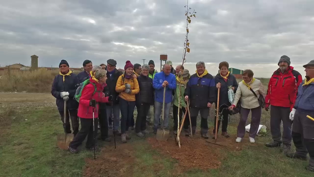 Asociación Pulchra Leonina plantación 2018